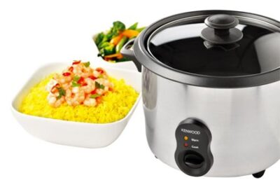 Best Stainless Steel Rice Cooker Reviews 2021